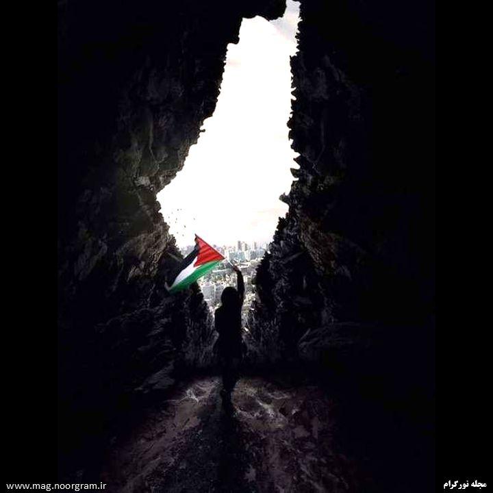 پروفایل برای فلسطین