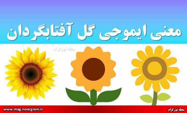 معنی ایموجی گل آفتابگردان